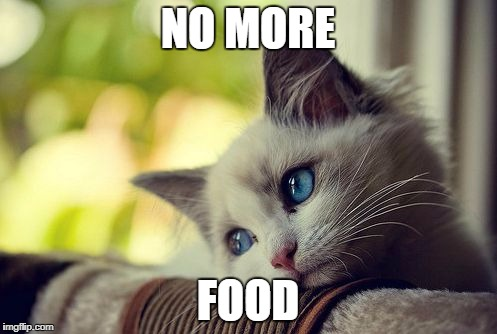 First World Problems Cat Meme | NO MORE FOOD | image tagged in memes,first world problems cat | made w/ Imgflip meme maker