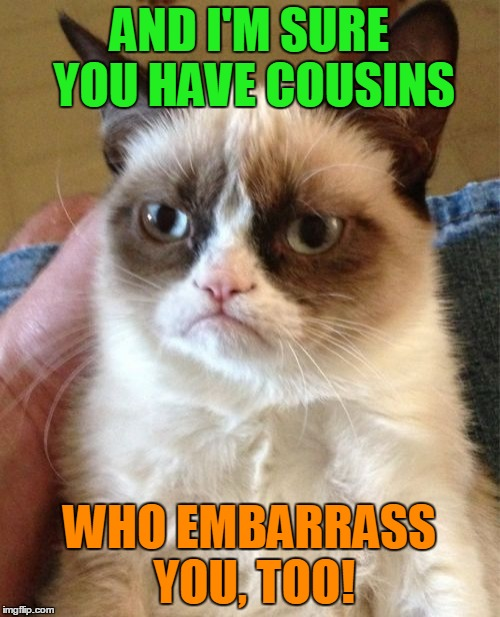 Grumpy Cat Meme | AND I'M SURE YOU HAVE COUSINS WHO EMBARRASS YOU, TOO! | image tagged in memes,grumpy cat | made w/ Imgflip meme maker