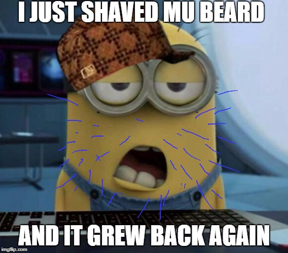 Sleepy Minion |  I JUST SHAVED MU BEARD; AND IT GREW BACK AGAIN | image tagged in sleepy minion,scumbag | made w/ Imgflip meme maker