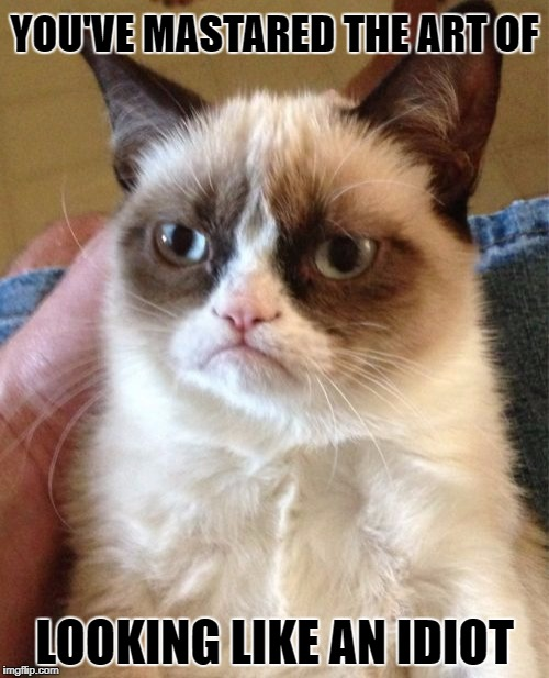 Grumpy Cat Meme | YOU'VE MASTARED THE ART OF LOOKING LIKE AN IDIOT | image tagged in memes,grumpy cat | made w/ Imgflip meme maker