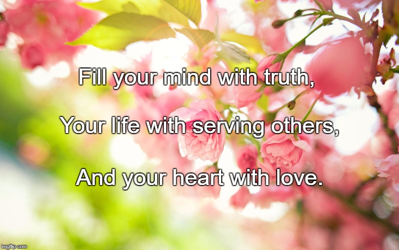Pretty pink flowers | Fill your mind with truth, And your heart with love. Your life with serving others, | image tagged in pretty pink flowers | made w/ Imgflip meme maker