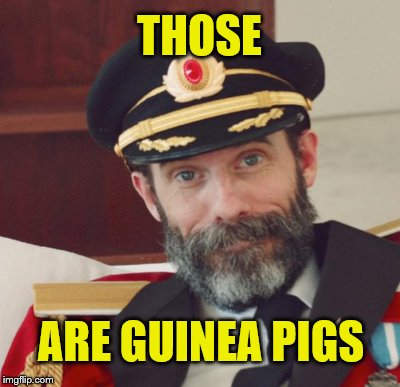 THOSE ARE GUINEA PIGS | made w/ Imgflip meme maker