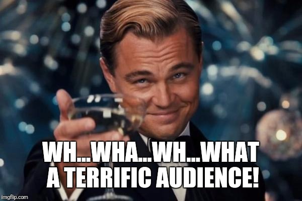 Leonardo Dicaprio Cheers Meme | WH...WHA...WH...WHAT A TERRIFIC AUDIENCE! | image tagged in memes,leonardo dicaprio cheers | made w/ Imgflip meme maker