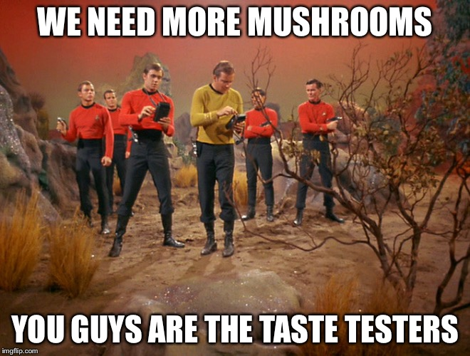 Five red shirts | WE NEED MORE MUSHROOMS YOU GUYS ARE THE TASTE TESTERS | image tagged in five red shirts | made w/ Imgflip meme maker