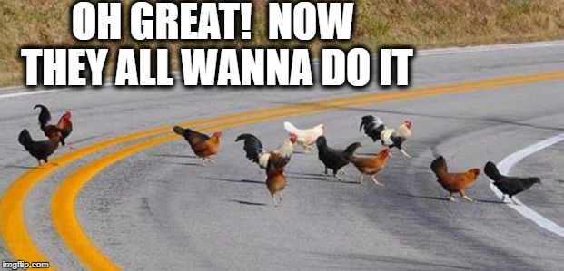 See what that chicken started?? | OH GREAT!  NOW THEY ALL WANNA DO IT | image tagged in cock road chickens | made w/ Imgflip meme maker