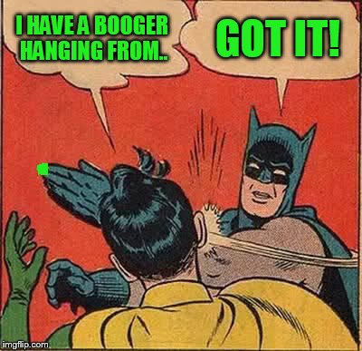 Batman Slapping Robin Meme | I HAVE A BOOGER HANGING FROM.. GOT IT! | image tagged in memes,batman slapping robin | made w/ Imgflip meme maker