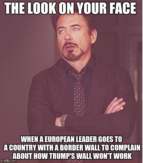 Face You Make Robert Downey Jr Meme | THE LOOK ON YOUR FACE WHEN A EUROPEAN LEADER GOES TO A COUNTRY WITH A BORDER WALL TO COMPLAIN ABOUT HOW TRUMP'S WALL WON'T WORK | image tagged in memes,face you make robert downey jr | made w/ Imgflip meme maker