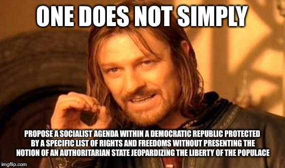 One does not simply socialism | ONE DOES NOT SIMPLY PROPOSE A SOCIALIST AGENDA WITHIN A DEMOCRATIC REPUBLIC PROTECTED BY A SPECIFIC LIST OF RIGHTS AND FREEDOMS WITHOUT PRES | image tagged in memes,one does not simply | made w/ Imgflip meme maker