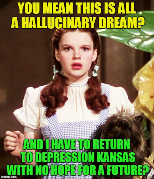 YOU MEAN THIS IS ALL A HALLUCINARY DREAM? AND I HAVE TO RETURN TO DEPRESSION KANSAS WITH NO HOPE FOR A FUTURE? | made w/ Imgflip meme maker