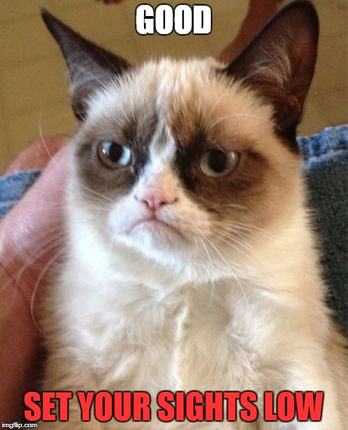 Grumpy Cat Meme | GOOD SET YOUR SIGHTS LOW | image tagged in memes,grumpy cat | made w/ Imgflip meme maker
