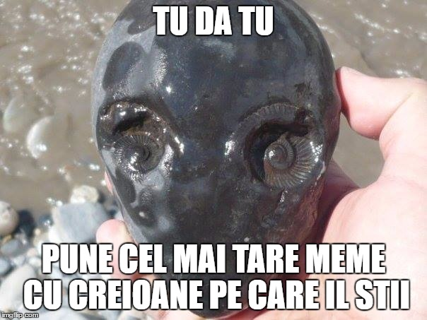 alien amonite | TU DA TU PUNE CEL MAI TARE MEME CU CREIOANE PE CARE IL STII | image tagged in alien amonite | made w/ Imgflip meme maker