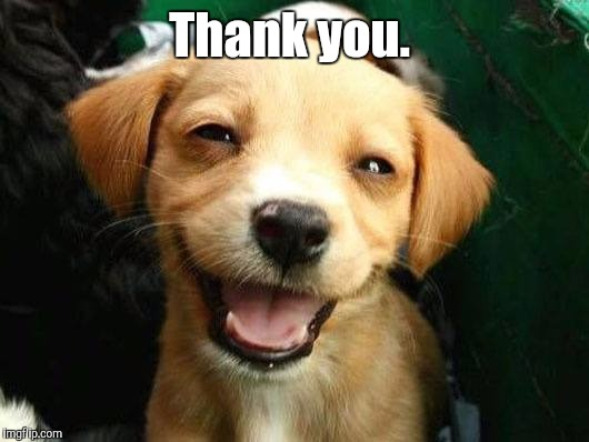 Dog Smiling | Thank you. | image tagged in dog smiling | made w/ Imgflip meme maker