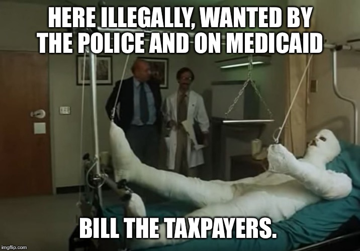 HERE ILLEGALLY, WANTED BY THE POLICE AND ON MEDICAID BILL THE TAXPAYERS. | made w/ Imgflip meme maker