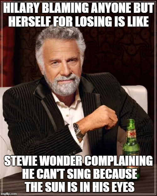 Cuz hes blend, rihgt? | HILARY BLAMING ANYONE BUT HERSELF FOR LOSING IS LIKE STEVIE WONDER COMPLAINING HE CAN'T SING BECAUSE THE SUN IS IN HIS EYES | image tagged in memes,the most interesting man in the world | made w/ Imgflip meme maker