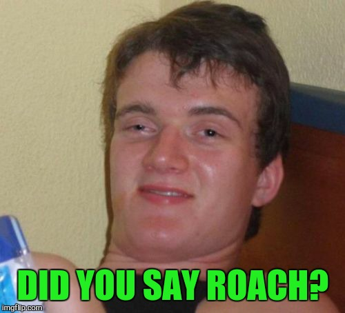 10 Guy Meme | DID YOU SAY ROACH? | image tagged in memes,10 guy | made w/ Imgflip meme maker