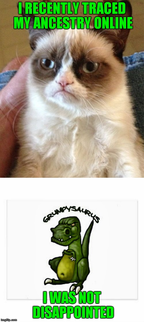 She comes from a very long line of grumps... | I RECENTLY TRACED MY ANCESTRY ONLINE I WAS NOT DISAPPOINTED | image tagged in ancestrycom,grumpy cat,was not disappointed | made w/ Imgflip meme maker