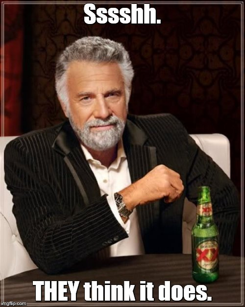 The Most Interesting Man In The World Meme | Sssshh. THEY think it does. | image tagged in memes,the most interesting man in the world | made w/ Imgflip meme maker