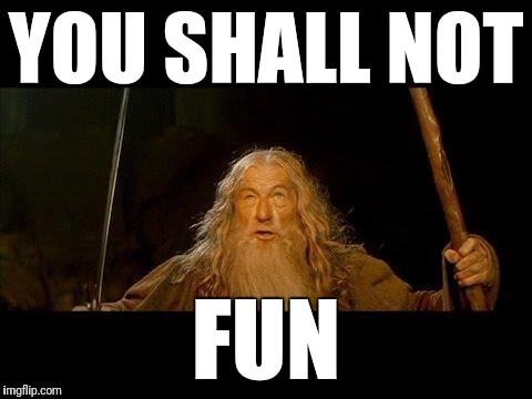 You shall not pass |  YOU SHALL NOT; FUN | image tagged in you shall not pass | made w/ Imgflip meme maker