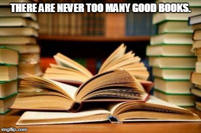 THERE ARE NEVER TOO MANY GOOD BOOKS. | image tagged in pile of books | made w/ Imgflip meme maker