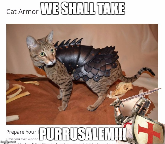 WE SHALL TAKE PURRUSALEM!!! | image tagged in deus vult cate version | made w/ Imgflip meme maker