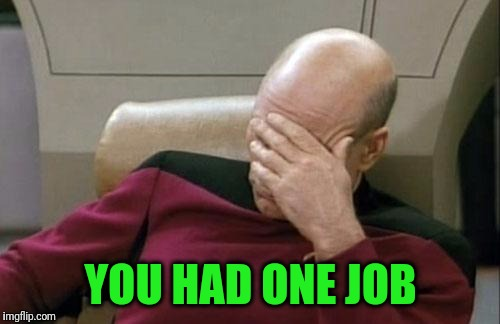 Captain Picard Facepalm Meme | YOU HAD ONE JOB | image tagged in memes,captain picard facepalm | made w/ Imgflip meme maker