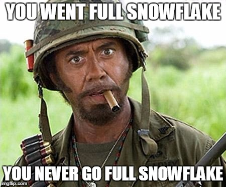 YOU WENT FULL SNOWFLAKE YOU NEVER GO FULL SNOWFLAKE | made w/ Imgflip meme maker