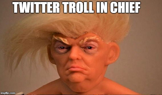 Ugly Twit | TWITTER TROLL IN CHIEF | image tagged in donald j trump | made w/ Imgflip meme maker