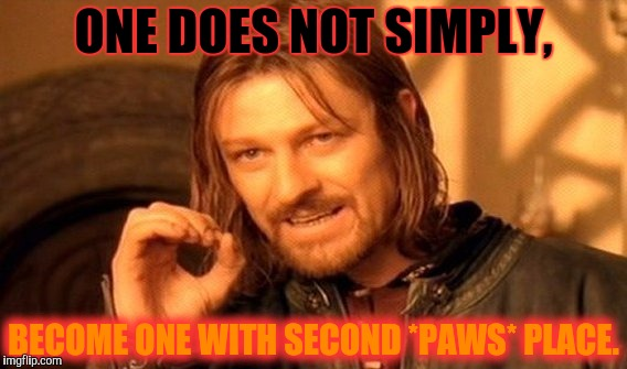 One Does Not Simply Meme | ONE DOES NOT SIMPLY, BECOME ONE WITH SECOND *PAWS* PLACE. | image tagged in memes,one does not simply | made w/ Imgflip meme maker