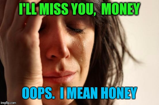 First World Problems Meme | I'LL MISS YOU,  MONEY OOPS.  I MEAN HONEY | image tagged in memes,first world problems | made w/ Imgflip meme maker
