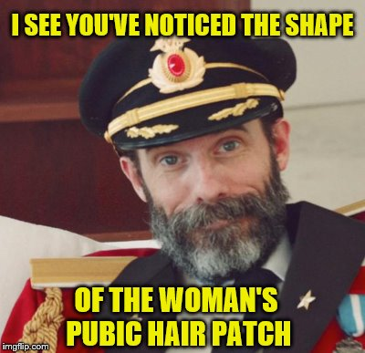 I SEE YOU'VE NOTICED THE SHAPE OF THE WOMAN'S PUBIC HAIR PATCH | made w/ Imgflip meme maker