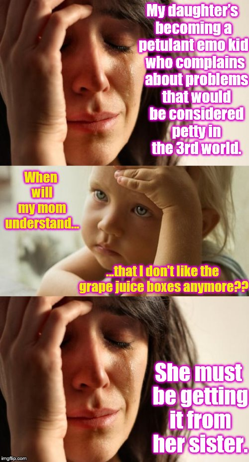 First World Family Problems | My daughter's becoming a petulant emo kid who complains about problems that would be considered petty in the 3rd world. When will my mom und | image tagged in memes,funny,phunny,first world problems,kids | made w/ Imgflip meme maker