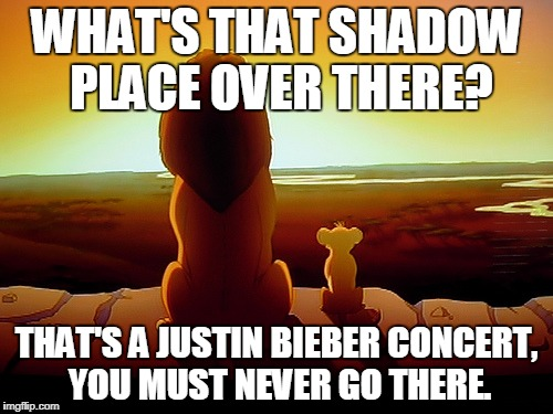 Lion King Meme | WHAT'S THAT SHADOW PLACE OVER THERE? THAT'S A JUSTIN BIEBER CONCERT, YOU MUST NEVER GO THERE. | image tagged in memes,lion king | made w/ Imgflip meme maker