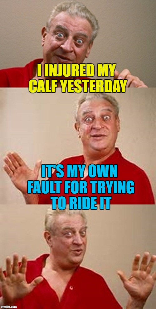 Now his calf has a beef... :) | I INJURED MY CALF YESTERDAY IT'S MY OWN FAULT FOR TRYING TO RIDE IT | image tagged in bad pun dangerfield,memes,animals,cows | made w/ Imgflip meme maker