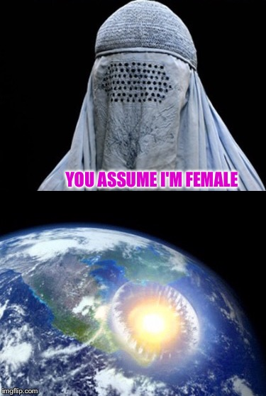 Femerrorism  | YOU ASSUME I'M FEMALE | image tagged in memes | made w/ Imgflip meme maker