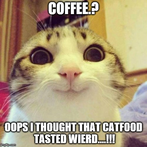 Smiling Cat Meme | COFFEE.? OOPS I THOUGHT THAT CATFOOD TASTED WIERD....!!! | image tagged in memes,smiling cat | made w/ Imgflip meme maker