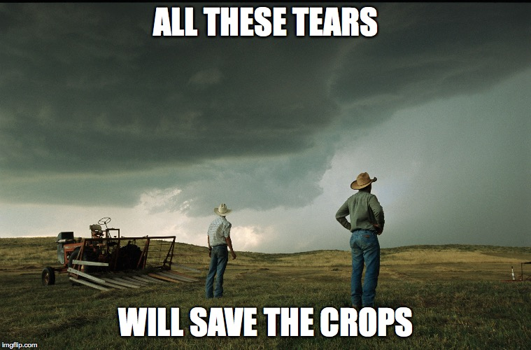 cry me out this drought  | ALL THESE TEARS WILL SAVE THE CROPS | image tagged in tears,why you sad,cry,pussy | made w/ Imgflip meme maker