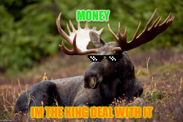 Andy 'Moose' Symmons | IM THE KING DEAL WITH IT MONEY | image tagged in andy 'moose' symmons | made w/ Imgflip meme maker