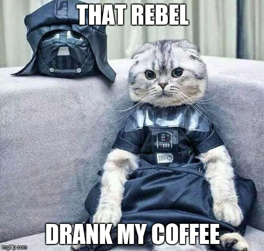 Darth Cat | THAT REBEL DRANK MY COFFEE | image tagged in darth cat | made w/ Imgflip meme maker