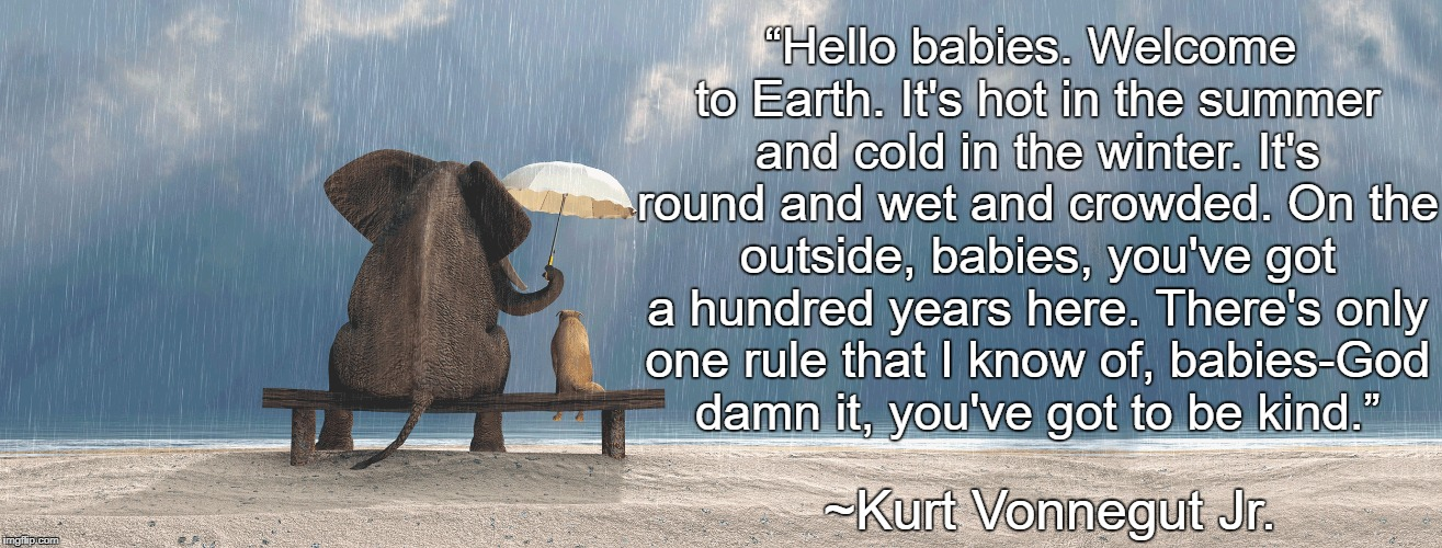 "Umbrella In The Rain | ""Hello babies. Welcome to Earth. It's hot in the summer and cold in the winter. It's round and wet and crowded. On the outside, babies, you' 
