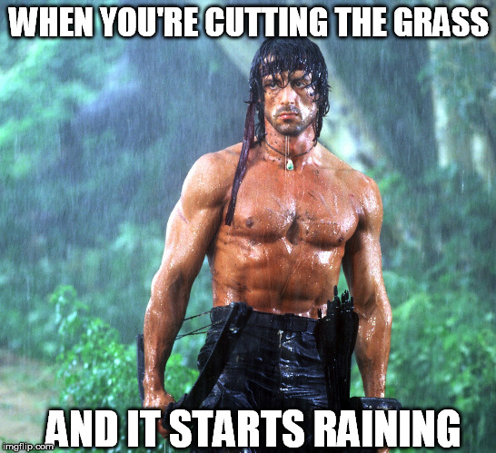 That face... | WHEN YOU'RE CUTTING THE GRASS AND IT STARTS RAINING | image tagged in rambo,grass,raining | made w/ Imgflip meme maker