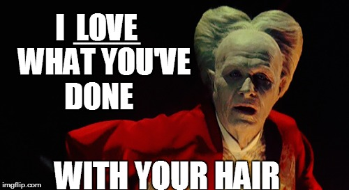 I  LOVE   WHAT YOU'VE DONE WITH YOUR HAIR BBBBBBBBBBBBBBBBBBBBBBBBBBBBBBBBBBBBBBBBBBBBBBBB | made w/ Imgflip meme maker