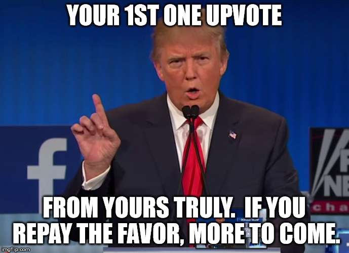 trump | YOUR 1ST ONE UPVOTE FROM YOURS TRULY.  IF YOU REPAY THE FAVOR, MORE TO COME. | image tagged in trump | made w/ Imgflip meme maker