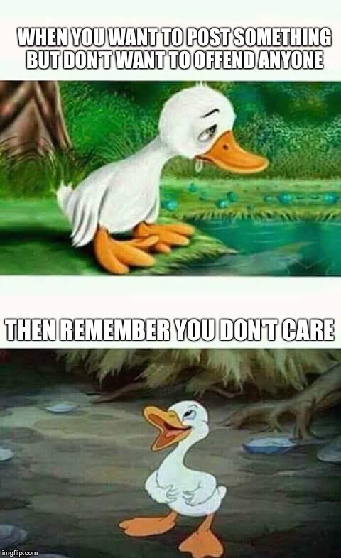 Sad Happy Duck | WHEN YOU WANT TO POST SOMETHING BUT DON'T WANT TO OFFEND ANYONE THEN REMEMBER YOU DON'T CARE | image tagged in sad happy duck | made w/ Imgflip meme maker
