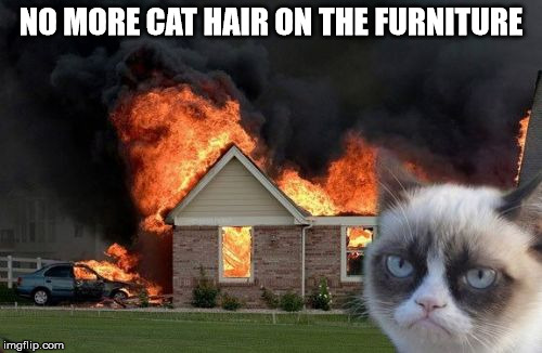 Burn Kitty Meme | NO MORE CAT HAIR ON THE FURNITURE | image tagged in memes,burn kitty,grumpy cat | made w/ Imgflip meme maker