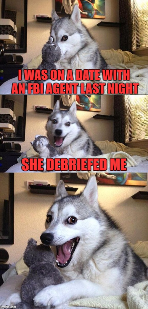 Women in uniform sometimes they look so cold Women in uniform but oooh they feel so warm | I WAS ON A DATE WITH AN FBI AGENT LAST NIGHT SHE DEBRIEFED ME | image tagged in memes,bad pun dog | made w/ Imgflip meme maker