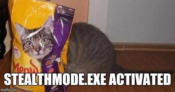 STEALTHMODE.EXE ACTIVATED | made w/ Imgflip meme maker