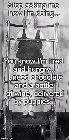 Stop asking me how I'm doing... and a bottle of wine, delivered by puppies... You know I'm tired and hungry...  I need chocolate | image tagged in diet,tired,hungry,chocolate,wine bottle,puppies | made w/ Imgflip meme maker