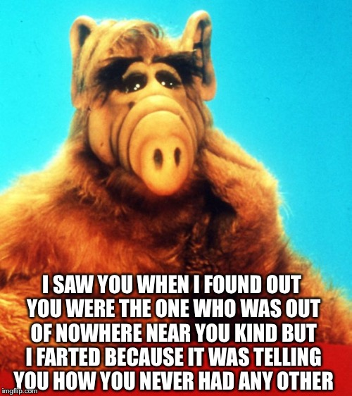 Idk then | I SAW YOU WHEN I FOUND OUT YOU WERE THE ONE WHO WAS OUT OF NOWHERE NEAR YOU KIND BUT I FARTED BECAUSE IT WAS TELLING YOU HOW YOU NEVER HAD A | image tagged in alf the alien,alf,help,i have no idea what i am doing,fart jokes | made w/ Imgflip meme maker