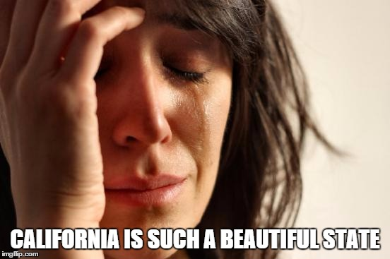 First World Problems Meme | CALIFORNIA IS SUCH A BEAUTIFUL STATE | image tagged in memes,first world problems | made w/ Imgflip meme maker
