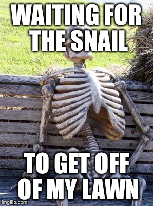 Waiting Skeleton Meme | WAITING FOR THE SNAIL TO GET OFF OF MY LAWN | image tagged in memes,waiting skeleton | made w/ Imgflip meme maker